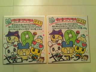 DSC_sikisi.jpg
